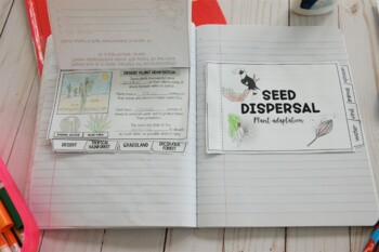 Parts of the Plant Interactive Notebook