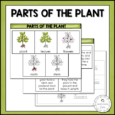 Parts of the Plant | Nature Curriculum in Cards | Montessori