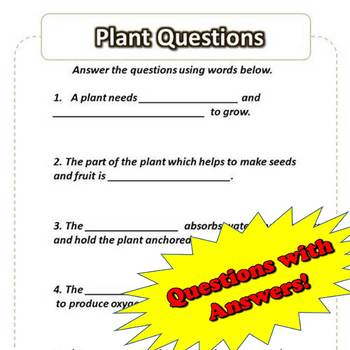Parts of the Plant Worksheet – Cutout and Questions
