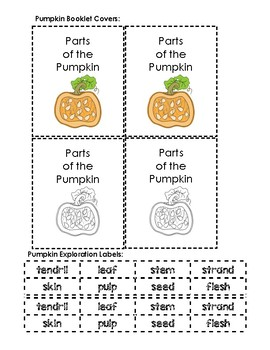 Parts of the Pumpkin Booklet