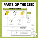 Parts of the Seed | Nature Curriculum in Cards | Montessori