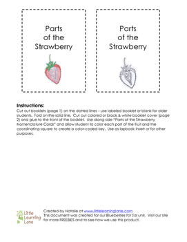 Parts of the Strawberry Booklet