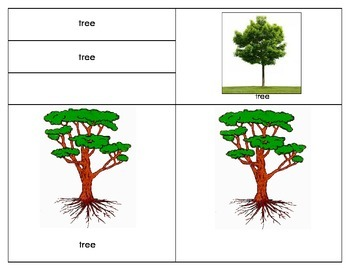 Parts of the Tree