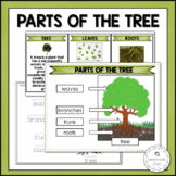 Parts of the Tree | Nature Curriculum in Cards | Montessori