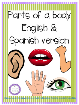 Parts of the body english and spanish version