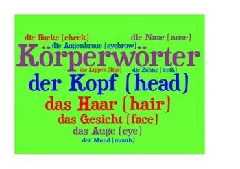 Parts of the body in German. Körperwörter.  Poster