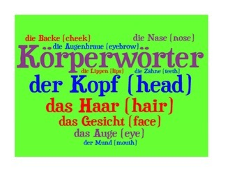 Parts of the body in German. Körperwörter.  Poster