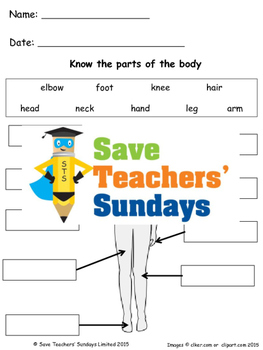 Parts of the human body lesson plan and worksheets (2 levels of difficulty)