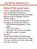Parts of the polar bear