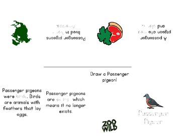 Passenger Pigeon -- 10 Resources -- Coloring Pages, Reading & Activities