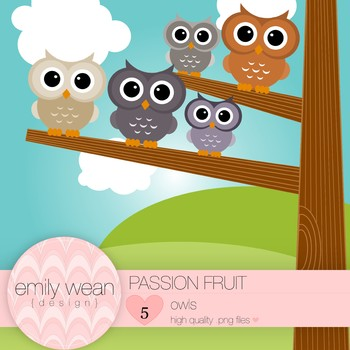 Passion Fruit - Owl Clip Art