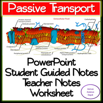 Passive Cell Transport: PowerPoint, Student Guided Notes, Worksheet