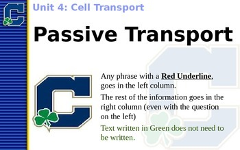 Passive Transport (Diffusion & Osmosis) Notes