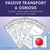 Passive Transport & Osmosis Differentiated Brochure Foldable for INB