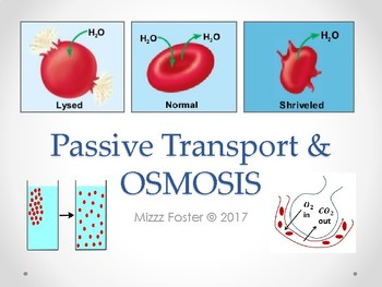 Passive Transport & Osmosis Power Point