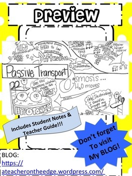 Passive Transport Sketch Notes Doodle Notes W/Teacher's Guide & Student Notes!