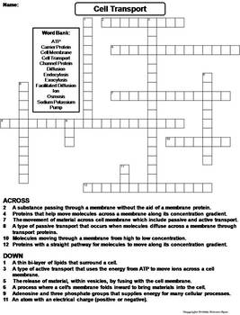 Passive and Active Cell Transport Worksheet/ Crossword Puzzle