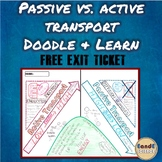 Passive vs Active Transport Science Doodle & Learn Note w/