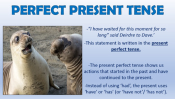 Past Perfect and Present Perfect Tense!