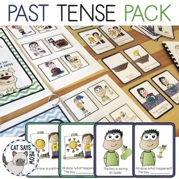 Past Tense Verbs Pack! Regular & Irregular: Illustrated! C