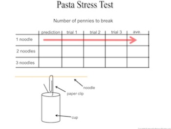 Pasta Stress Test- learn the in's and out's of a great science investigation
