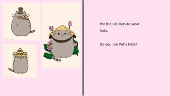 Pat The Cat- A (mostly)  CVC story