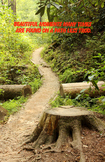 Poster - Path Less Trod