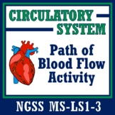 Path of Blood Flow Cut Outs Activity - Human Body Systems Circulatory MS-LS1-3