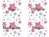 Patriotic/Election Locker Tags