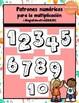 Patrones Numéricos para la multiplicación (POSTERS) | Skip Counting