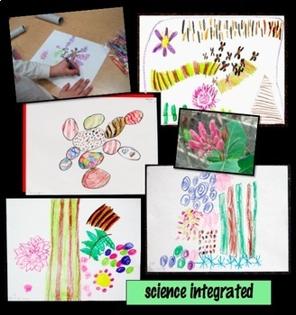 Art Lesson Drawing Patterns from Nature Science Integrated