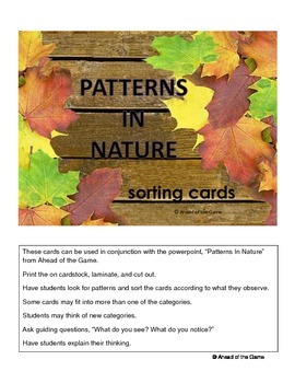 Patterns In Nature sorting cards
