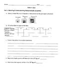 Patterns Quiz- 4th Grade