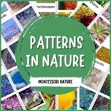 Patterns in Nature - Montessori Printable
