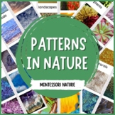 Patterns in Nature - Montessori Printable