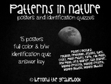 Patterns in Nature & Moon Phase Posters and Quizzes