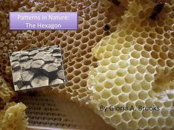 Patterns in Nature - The Hexagon - PowerPoint & Study Guide