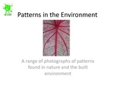Patterns in the Environment - A slideshow of images