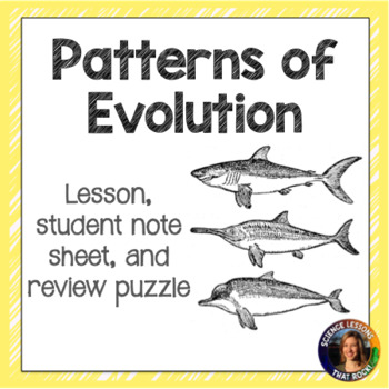 Patterns of Evolution
