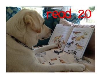 """Paws"" to READ 20 Everyday"