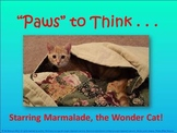"""Paws"" to Think: Library Rules with Marmalade the Wonder Cat -PowerPoint/posters"