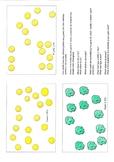 Pea Seed Genetics - Mendelian Inheritance Resource
