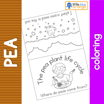 Pea life cycle coloring booklet