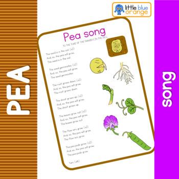 Pea life cycle song