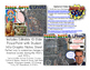 Peace, Love, & Unrest: 1960's & 1970's PowerPoint and Student Infographic Notes