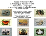 Peace in Nature Poster Set
