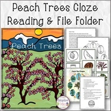 Peach Trees Cloze Reading and File Folder Match