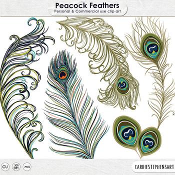 Peacock Feather Clip Art, Bohemian Bird, Elegant, Decorative Graphics
