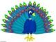 Peacock Signs and Cutouts