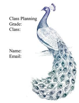 Peacock Theme Organization BInder
